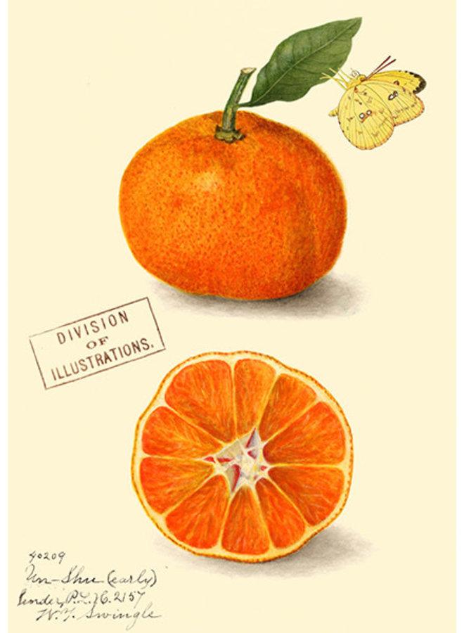 Clementine Vintage Card
