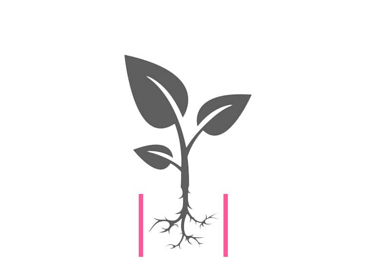 Wurzelsperre, Rhizomsperre, BISKAMI, Pflanzenschutz, Unkrautschutz