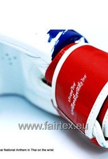 """Fairtex BGV1 """"Thai Pride"""" Limited Edition Gloves"""