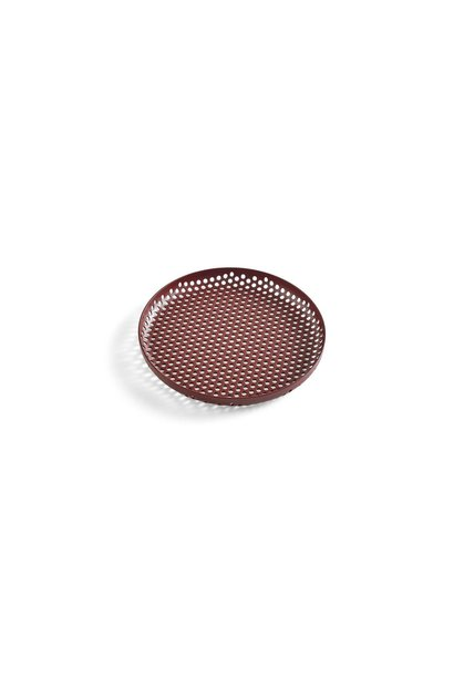 Perforated Tray - S