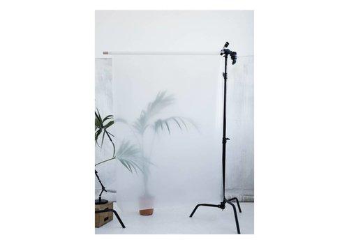 Kristina Dam Studio Botanic postcard - palm II