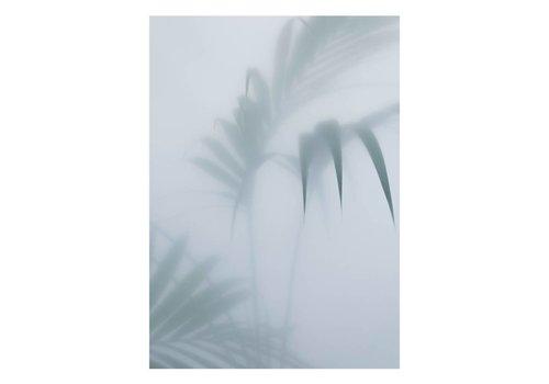 Kristina Dam Studio Botanic poster - palm I