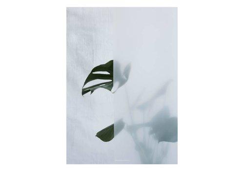 Kristina Dam Studio Botanic poster - split-leaf I - 50x70