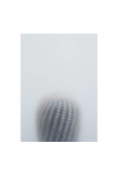 Botanic poster - ball cactus I