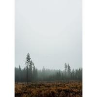 Skog poster - Fine Little Day - 70x100cm - frame natural solid oak
