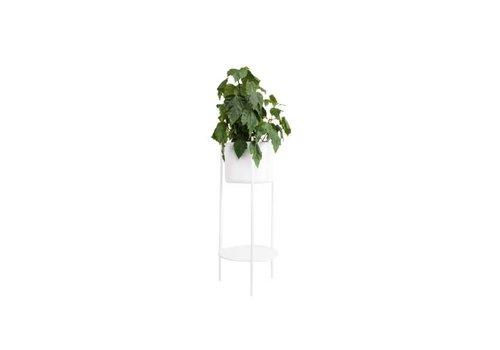 XLboom Ent - Medium - White