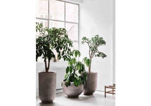 &Tradition Planter SC45