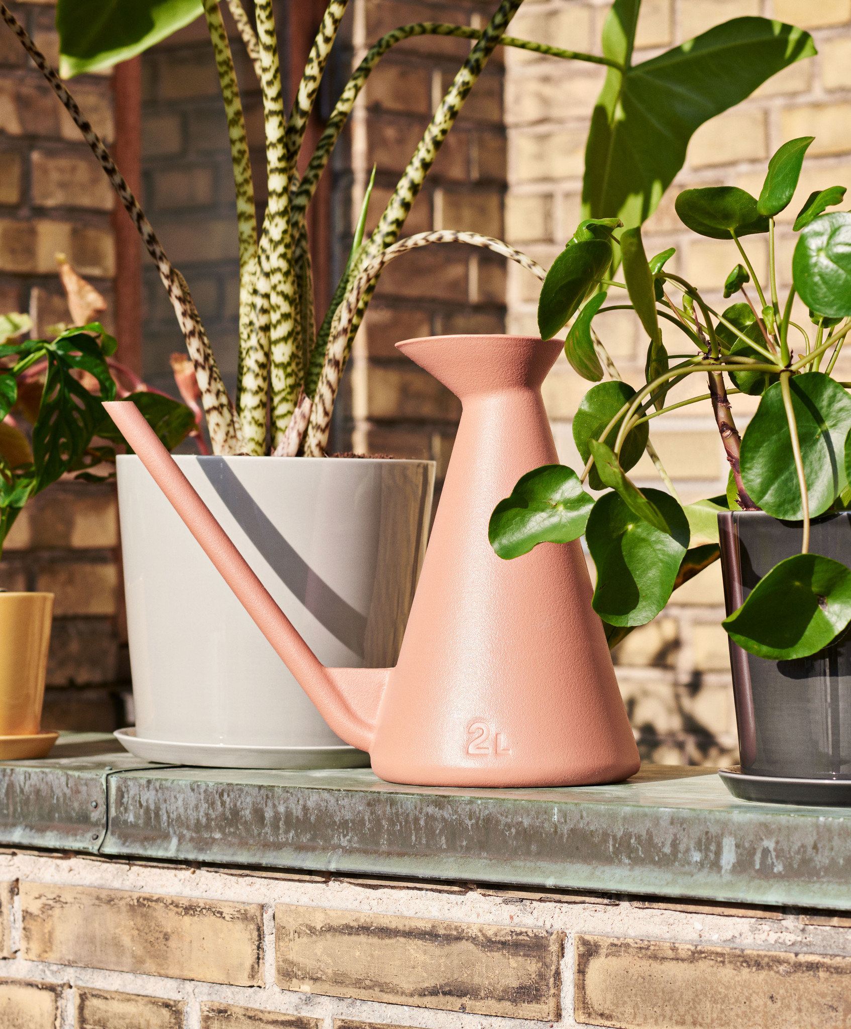 Watering Can-2