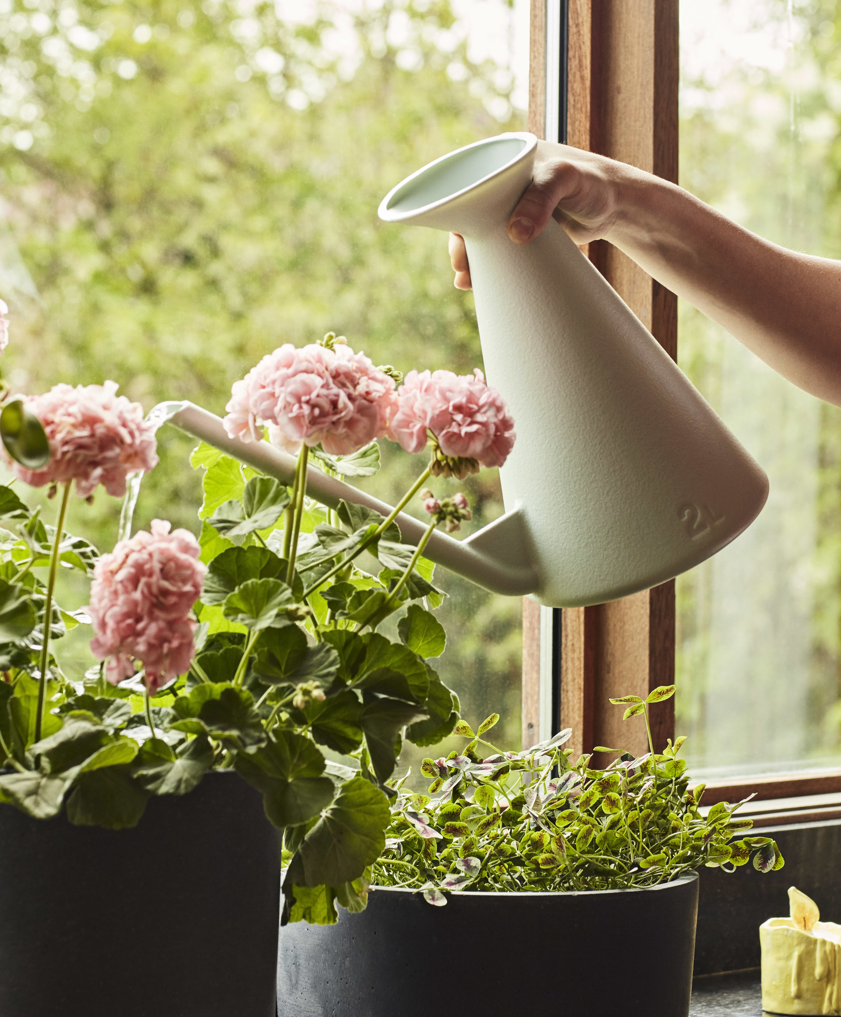 Watering Can-4