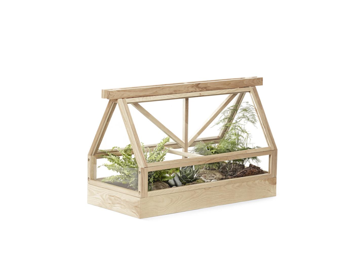 Greenhouse-6