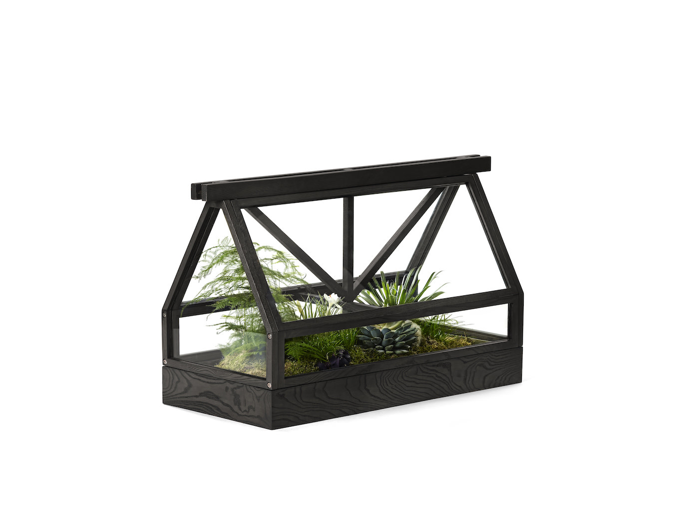 Greenhouse-8