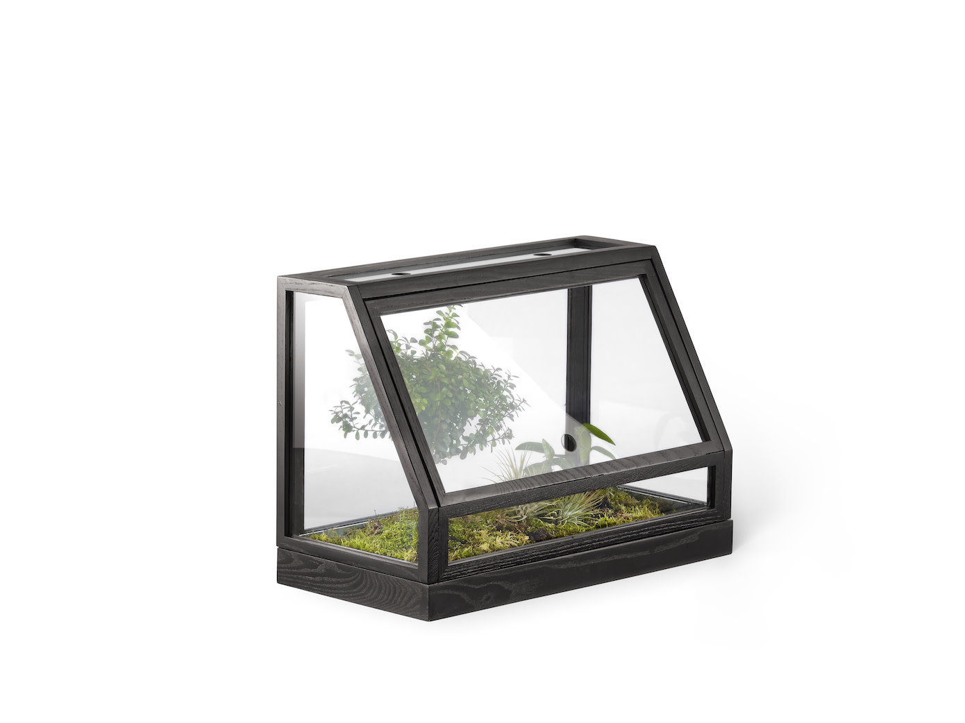 Mini Greenhouse-1