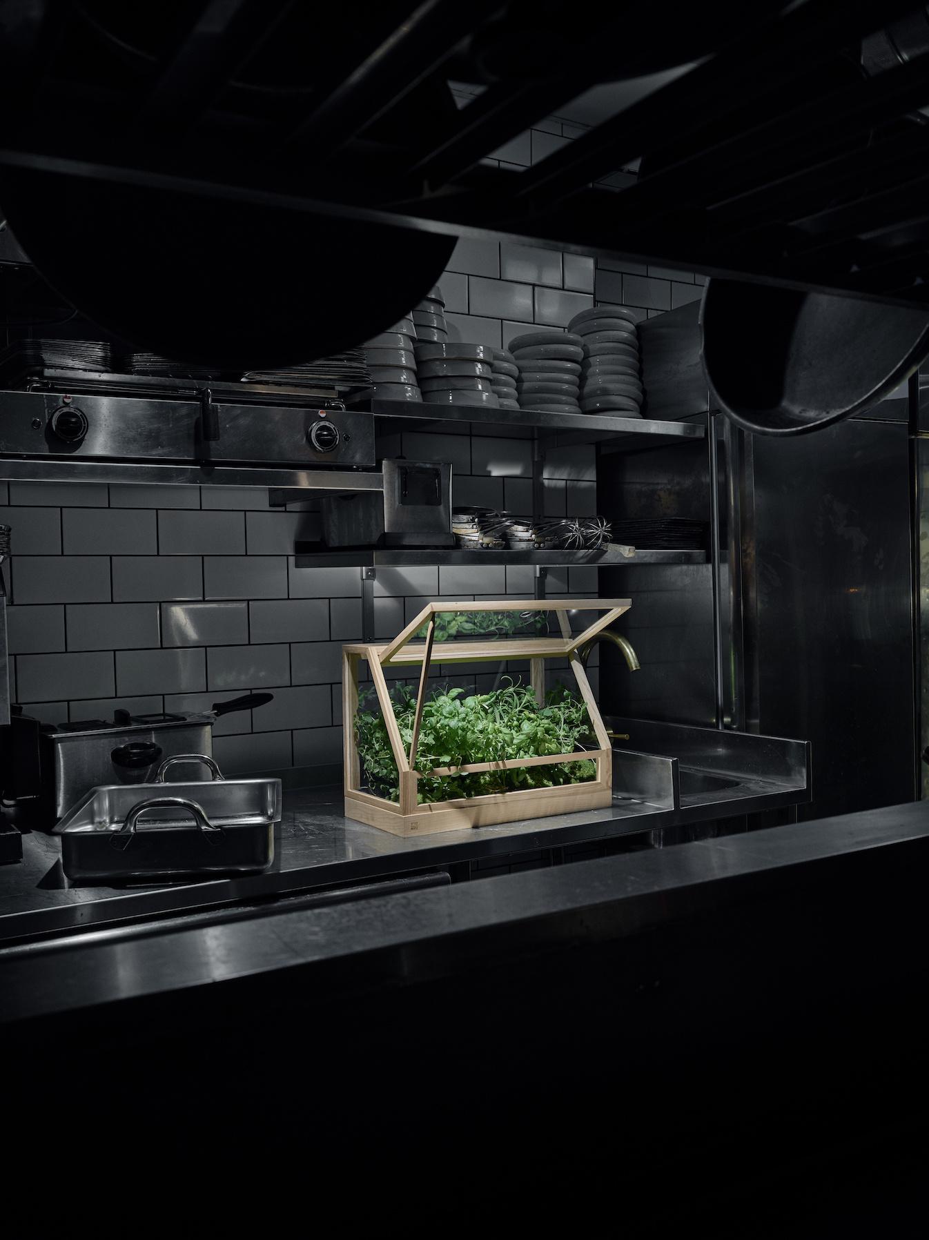 Mini Greenhouse-8