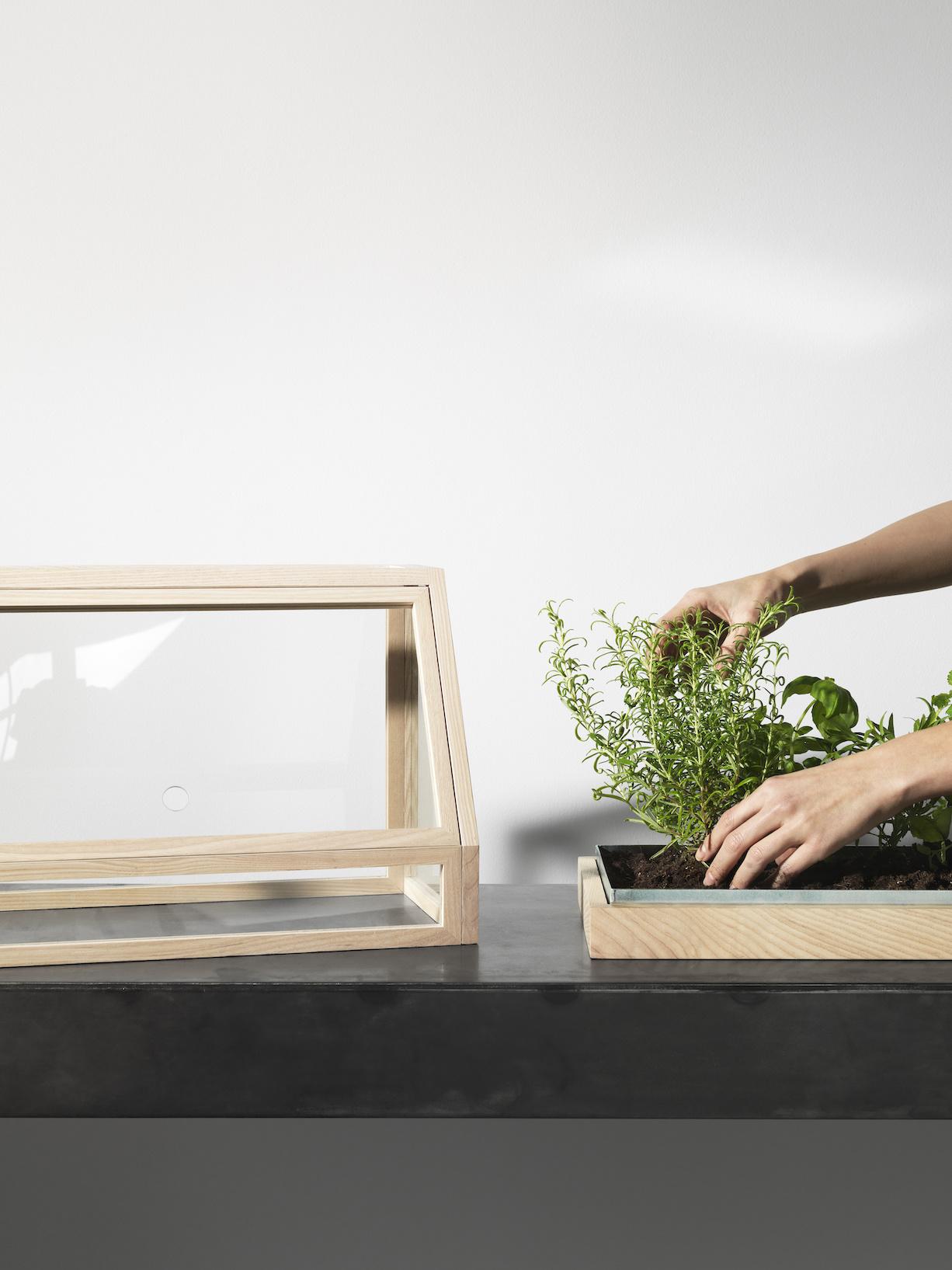 Mini Greenhouse-7