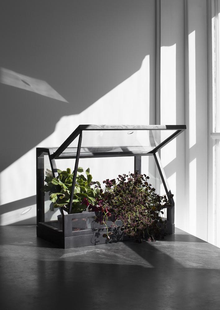 Mini Greenhouse-2