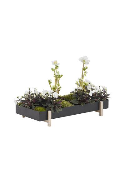 Botanic Tray