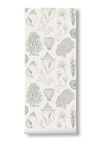 Shells Wallpaper Off-White