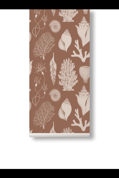Shells Wallpaper Toffee
