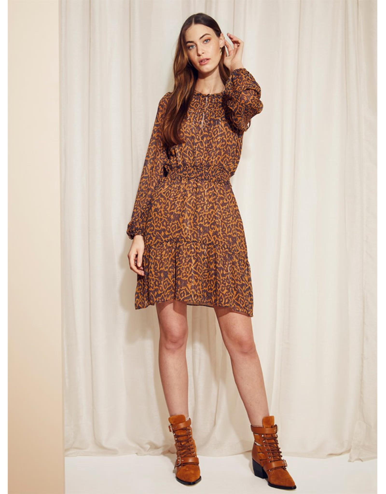 dante6 Okala Print Dress