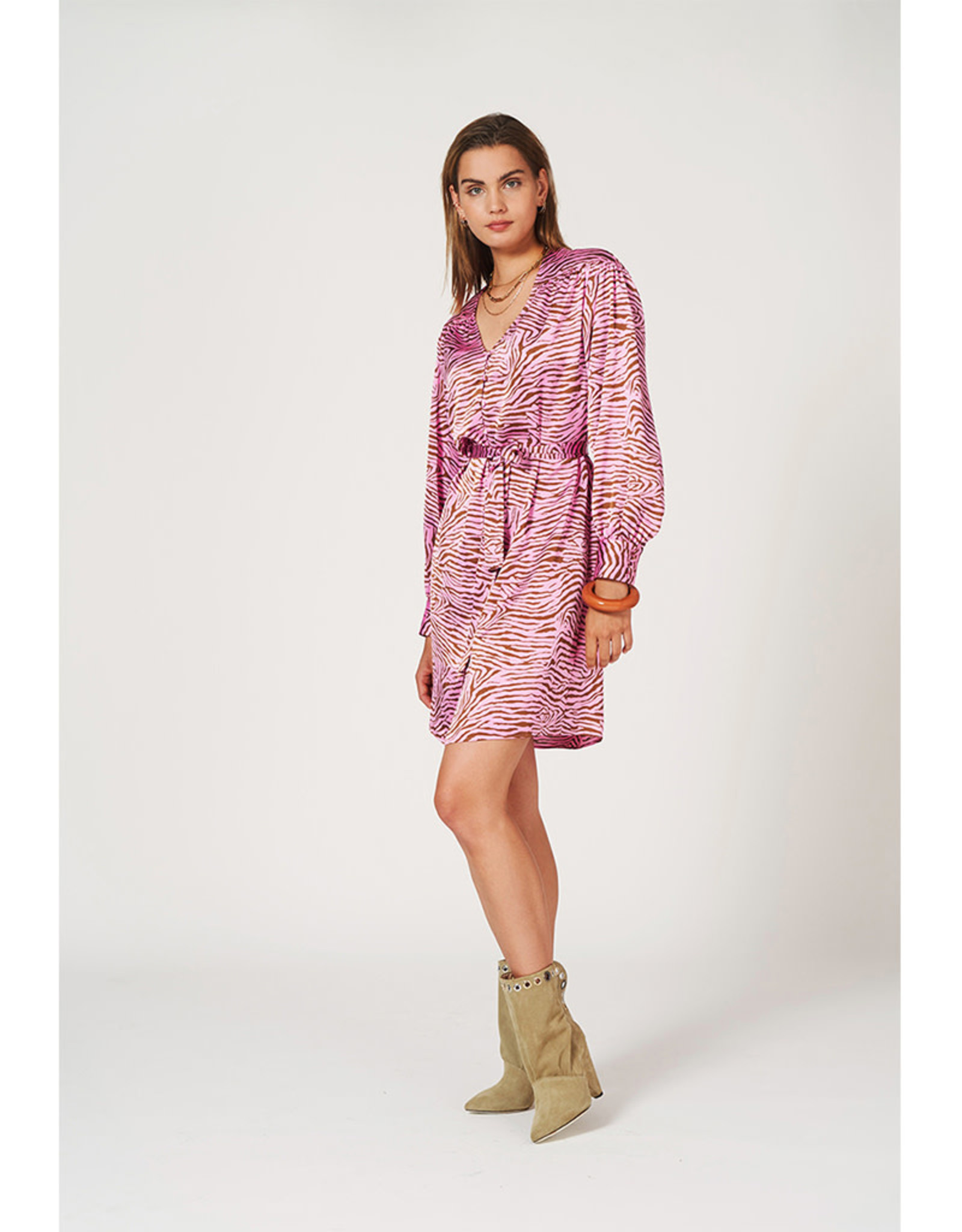 dante6 Roisin Print Dress