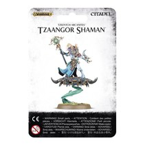 Age of Sigmar Tzeentch Arcanites: Tzaangor Shaman