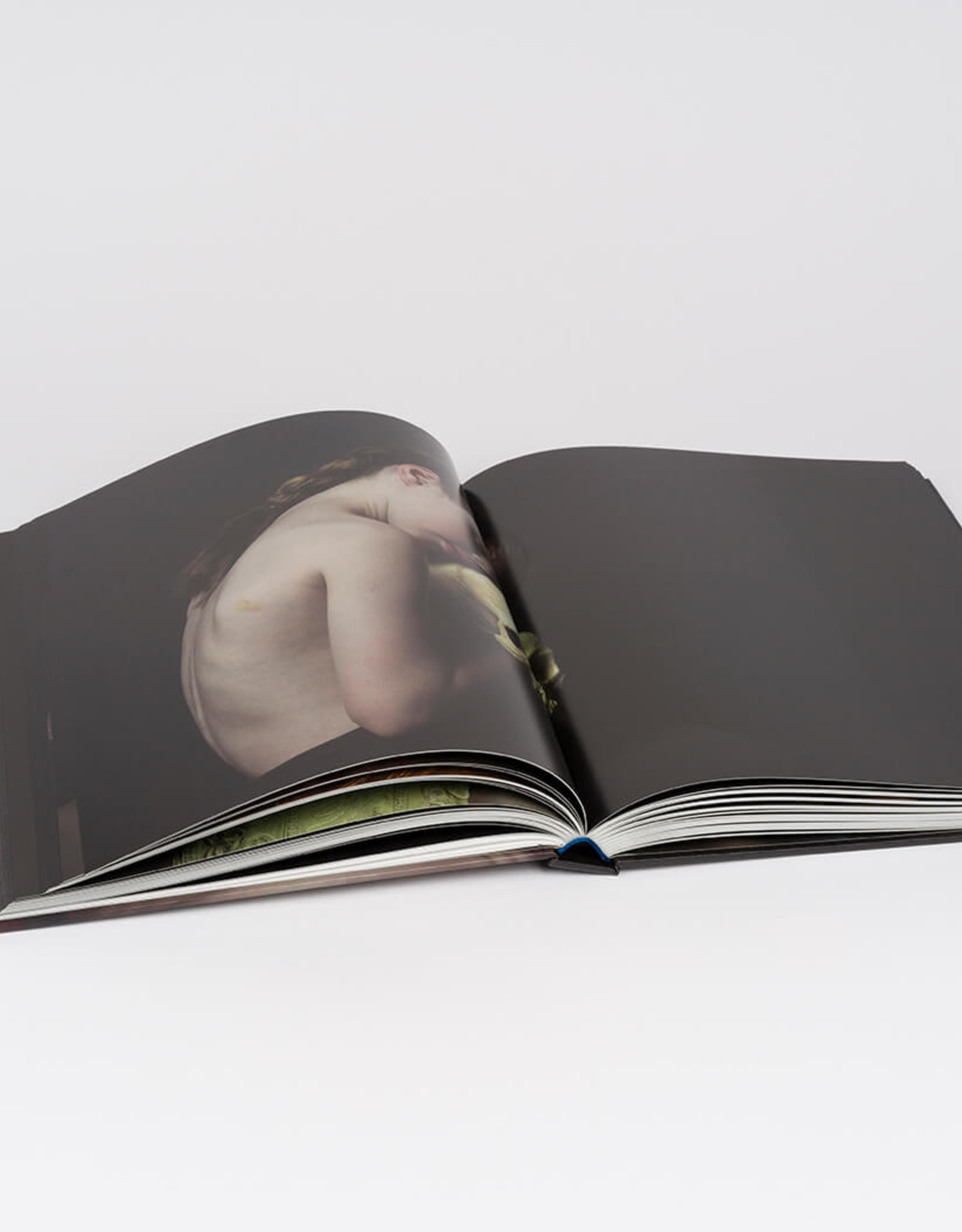 Danielle van Zadelhoff - Monografie