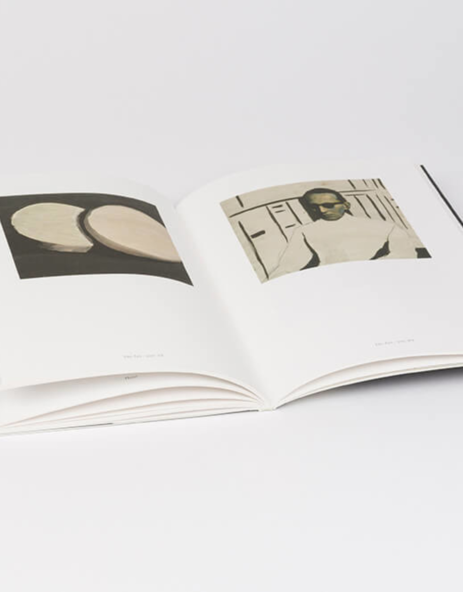 Luc Tuymans - catalogue Budapest & Warsaw