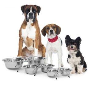 ☘ Decopatent® & Relaxdays Dieren Benodigdheden, voor uw Hond of Kat