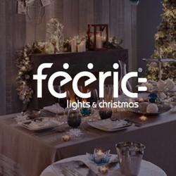 Feeric Lights & Christmas