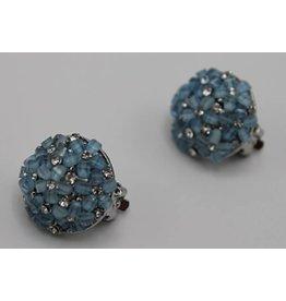 Clips blauw bloemen