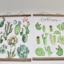 Buitendoek cactus 52x70cm 2 assortie