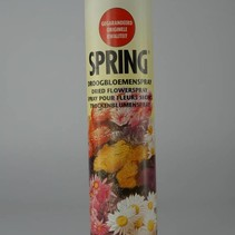Droogbloemenspray 750 ml
