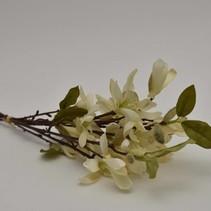 Magnolia bundle x 3 cream 45 cm