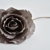Open Rose taupe medium