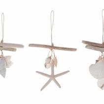 Driftwood starfish/shell hanger Natural 20cm 3pc Mixed