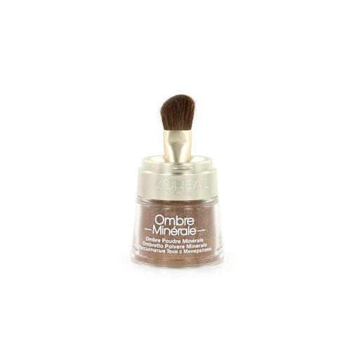 L'Oréal Color Minerals Oogschaduw - 13 Bronze Gold