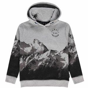 Tumble 'n dry Grijze hoodie 'olov'