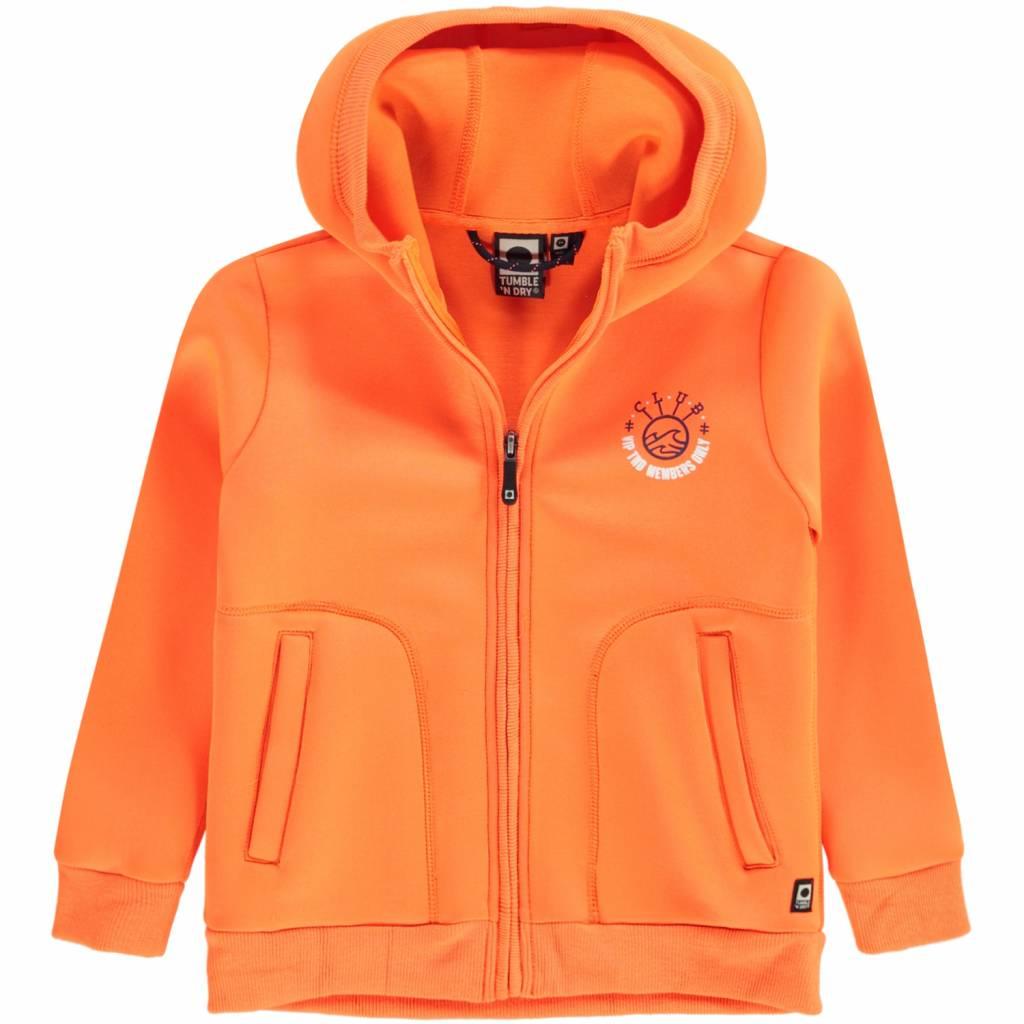 Oranje Trui.Neon Oranje Trui Vest Denter Snoezepoes