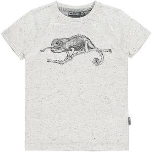 Tumble 'n dry Grijze T-shirt met hagedis