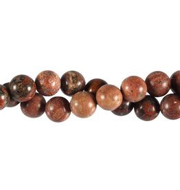 Jaspis (luipaard) kralen rond 10 mm (streng van 40 cm)