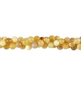 Opaal (honing) kralen rond 6 mm (streng van 40 cm)