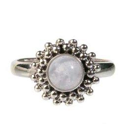 Zilveren ring maansteen (regenboog) maat 17 1/4 | rond bolletjes