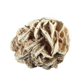 Woestijnroos 50 - 100 gram