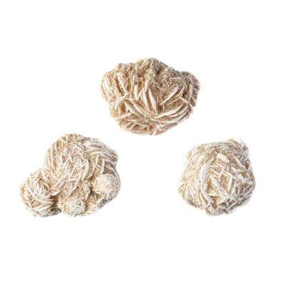 Woestijnroos 25 - 50 gram