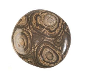 Stromatoliet steen