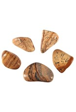 Jaspis (landschap) steen getrommeld 5 - 10 gram