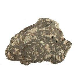Chrysant steen ruw 250 - 500 gram