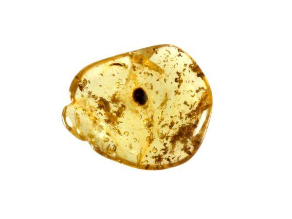 Barnsteen gepolijst 0,5 - 1 gram