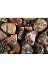 Jaspis (luipaard) steen getrommeld 10 - 20 gram