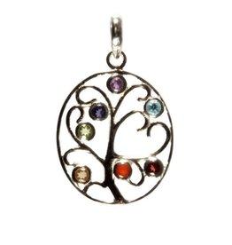 Zilveren hanger chakra boom